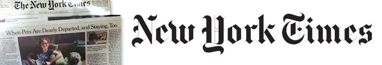 New York Times Profile